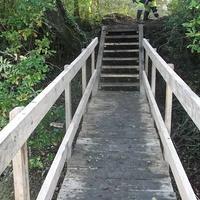 Ouverture de chemin et passerelle en bois