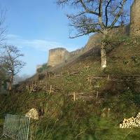 Recépage et création de fascines sur la butte du château de Lehon